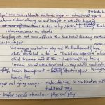 Writing summaries